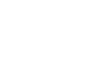 Pizza Company logo full white